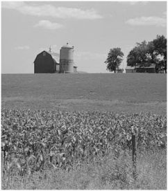 Dodge County Farm, c. 1941