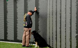 Vietnam Memorial Wall Replica